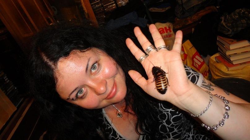 Содержать насекомых несложно