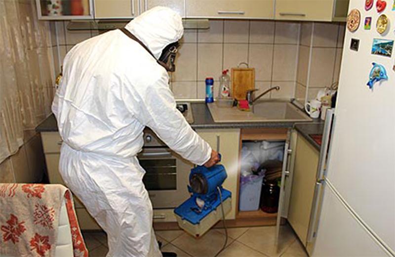 Уничтожение тараканов холодным туманом подготовка квартиры