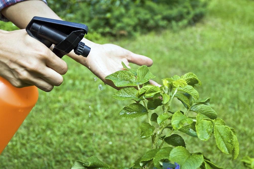 Обработка биопрепаратами