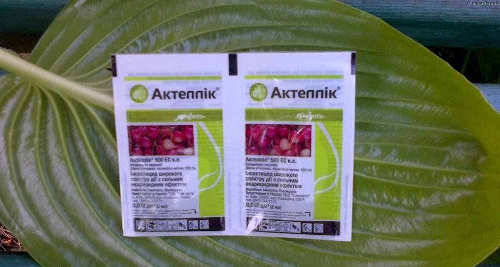 Эффективный инсектицид Актеллик