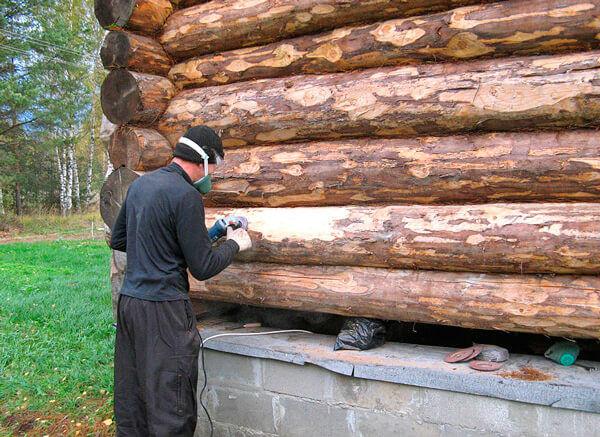 Защита деревянного дома от жука точильщика
