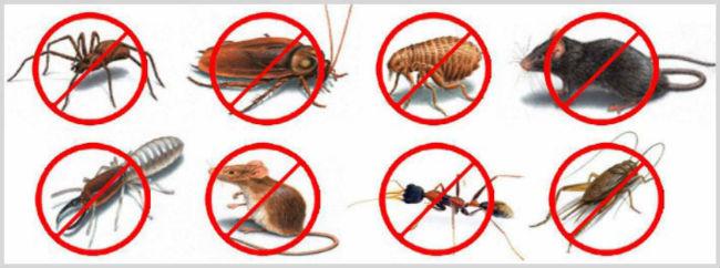 отпугиватель насекомых пест реджект инструкция