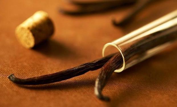Для самодельной защиты используются ванильные палочки